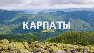 Карпаты 2020 - Поход на гору Хомяк - Сыроварня - Развлечения в Буковеле летом