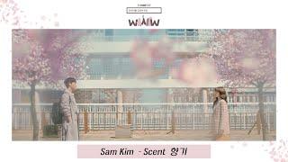 【韓繁中字】SAM KIM (샘 김) - 香氣 (Scent/향기) (請輸入檢索詞 WWW OST) (검색어를 입력하세요 WWW OST Part 4)