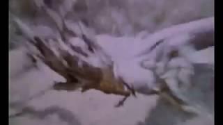 Dog Star Man (1964)
