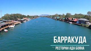 Ада Бояна рестораны ресторан Барракуда Черногория