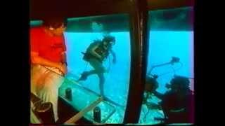 USHUAIA - Turks et Caicos avec Krov et Ann Menuhin
