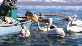 Ελλάδα και Τουρισμός- Greece is not only sun and sea!!