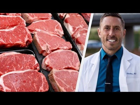 Paul Saladino MD On Eating Too Much Protein On A Carnivore Diet