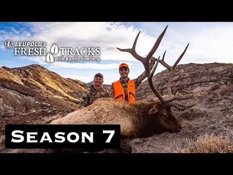 Public Land Bull: Wyoming Rifle Elk | (Amazon Episode)