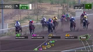 Vidéo de la course PMU PREMIO GRAN BASTIAN