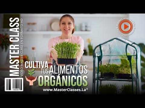 Cultiva tus Alimentos Orgánicos - Aliméntate de manera más sana.