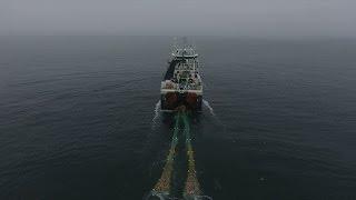 Greenpeace Investigates Arctic Bottom Trawling Fleet