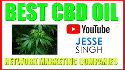 Best CBD Oil Network Marketing Companies | Which Has The TOP CBD Oil Products?