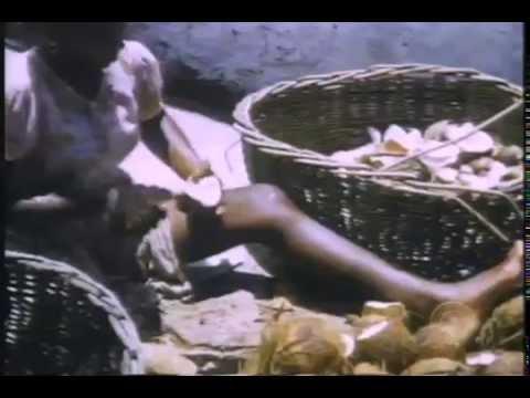Diego Garcia Island of shame (60 minutes)