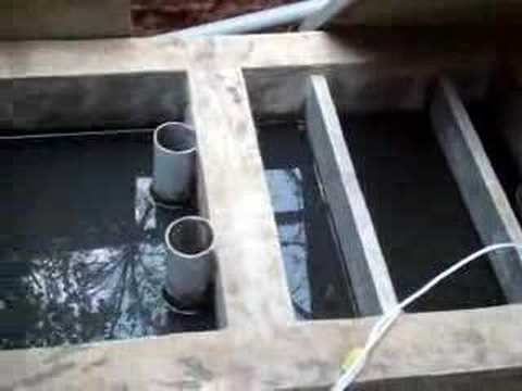 Bangalore Treating Kitchen Waste Water For Reuse Youtube