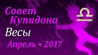 Весы, совет Купидона на апрель 2017. Любовный гороскоп.