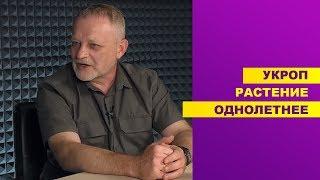 Андрей Золотарев: Хлопушка прозвучала, политический сезон стартовал