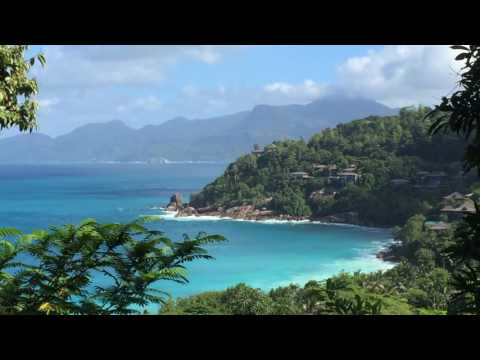 Living in Mahé forests, Seychelles