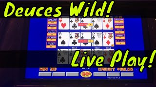Deuces Wild Video Poker! (live play) Triple play Multi-hand