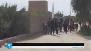 فيديو..الجيش العراقي يسيطر على حي الشهداء بالفلوجة