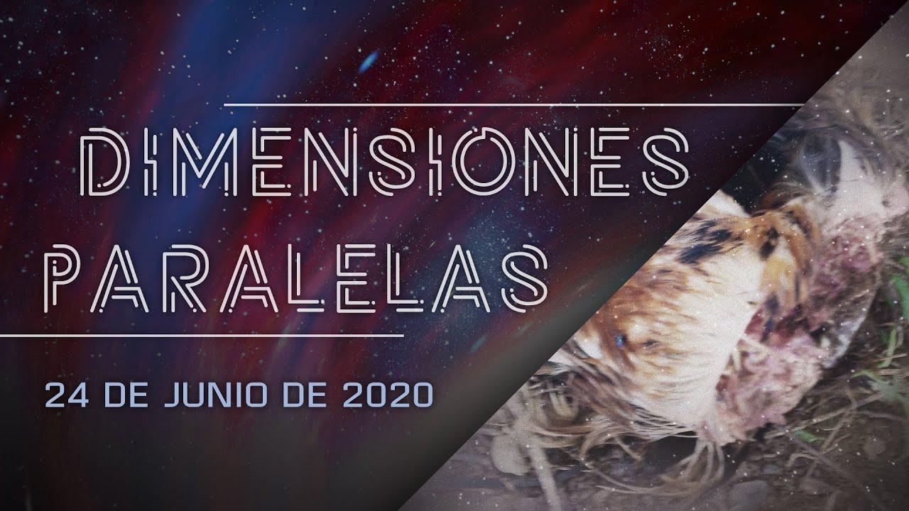 Dimensiones Paralelas: Muertes de animales y criaturas aladas en Utuado - Testimonios impactantes