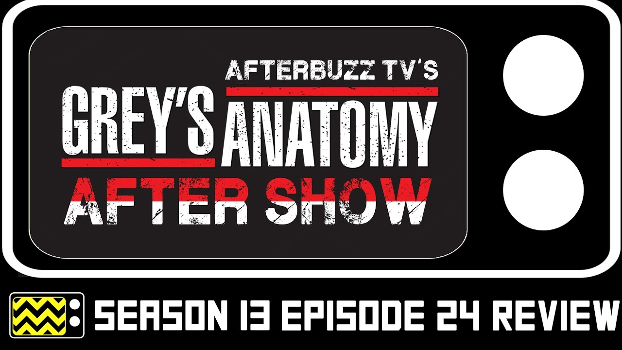 Grey\'s Anatomy Season 13 Episode 24 Review & After Show | AfterBuzz ...
