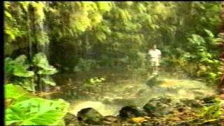 "Tahiti Clip  Rétro - "" Mareva """