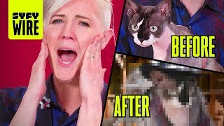 Hannah Hart's Cat Cosplays A Space Sheriff (Cospets) | SYFY WIRE