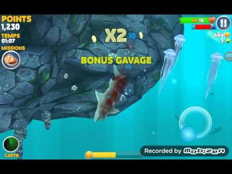 jeux de requin
