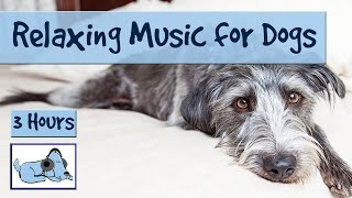 3 Hours Of Relaxing Dog Music. Calming Music For Dogs! Perfect For Fireworks!