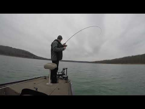 Norfork Lake Crappie Fishing. Casting To Fish Using Livescope