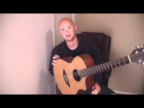 Breedlove Passport C250 Acoustic Guitar Review