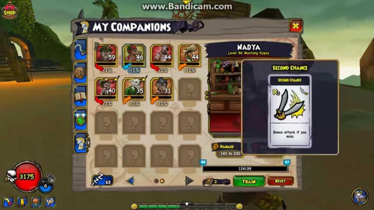 Pirate101 Buccaneer companions Level 1-70