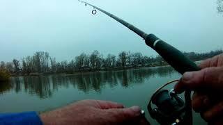 Осенняя рыбалка с берега