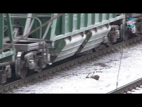 Поезд «Ласточка» сбил насмерть двух подростков в Орехово-Зуеве 29 11 16