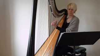 "Elbow ""One Day Like This"" - Harp arrangement"