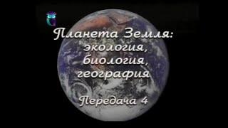 Передача 4. Природные зоны России. Часть 1