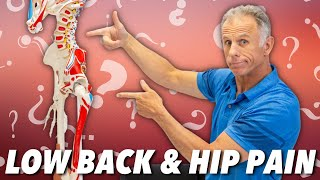 Low Back & Hip Pain? Is it Nerve, Muscle, or Joint? How to Tell.
