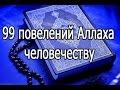 99 повелений Всевышнего Аллаха человечеству из священного Корана