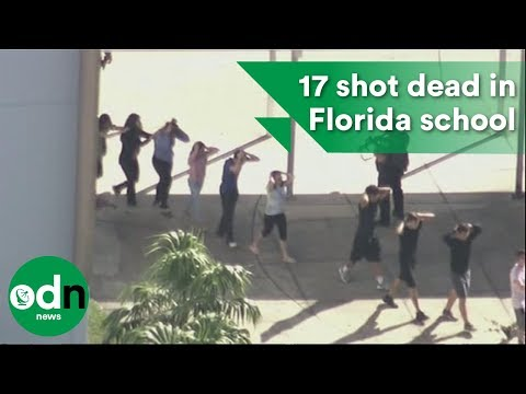 Shock and sadness as 17 shot dead in Florida school