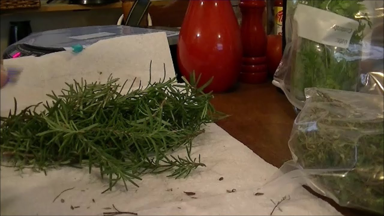 How to Save Your Herbs, Rosemary \u0026 Thyme, As if They were ...