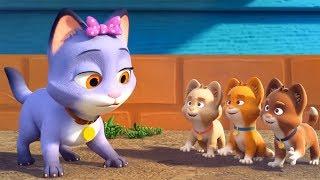 Meo Meo Meo Rửa Mặt Như Mèo 💙 Liên Khúc Nhạc Thiếu Nhi Mèo Con Cho Bé 💙 Chú Thỏ Con