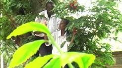 Br.Fr. Abedies (B.F.C) - Tazama Mume Wangu (Final Video)
