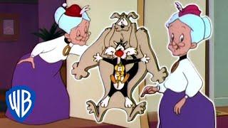 Looney Tunes | Dobule Grannies! | Classic Cartoon | WB Kids