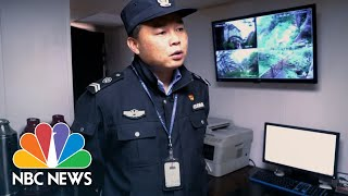 The 19th Guardian Of The Pine: A Famous Chinese Tree And Its Bodyguard | NBC News