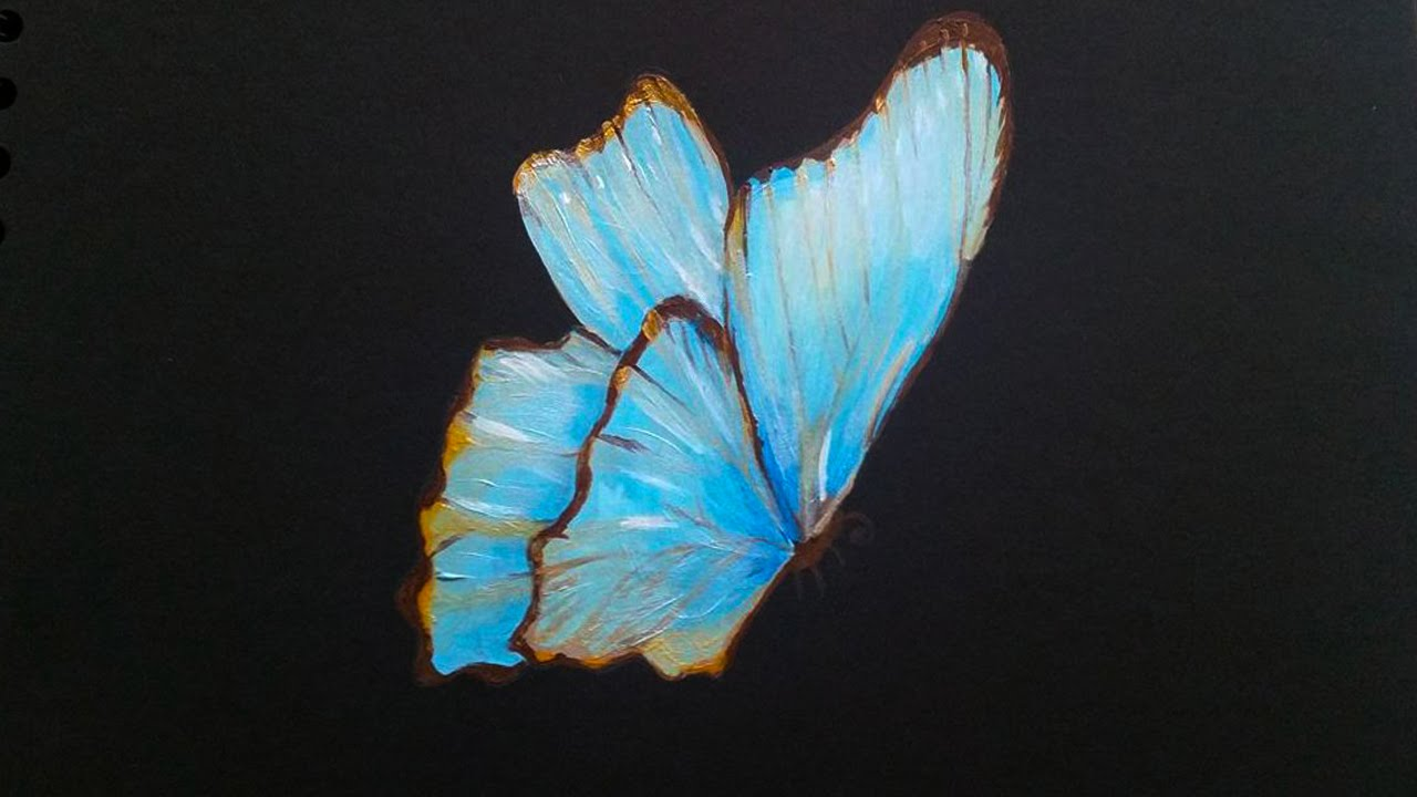 acrylic butterfly painting on black paper time lapse