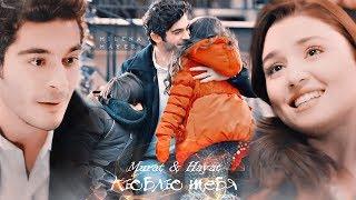 Murat & Hayat || Люблю тебя