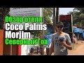 Coco Palms Morjim, Северный Гоа, Морджим. Обзор отеля.