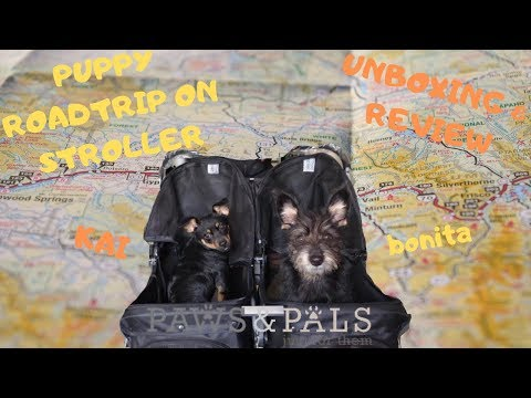 PAWS & PALS PUPPY STROLLER UNBOXING/REVIEW *NOT SPONSORED* but sponse me?