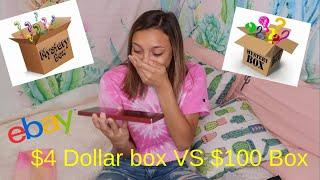$4 vs 100 Ebay Mystery Box