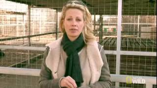 Alison Eastwood Speaks The Truth About G.W. Exotic