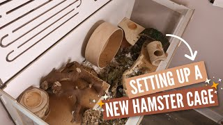 Setting Up A New Hamster Enclosure