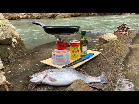 Creek Side TROUT CATCH And COOK