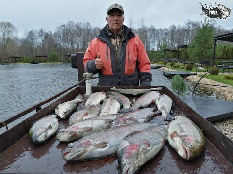 Платная рыбалка в Московской области. Платные пруды. Рыбалка в Москве. Ловля форели на БЕЗЛИМИТЕ!