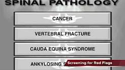 hqdefault - Back Pain Management Algorithm
